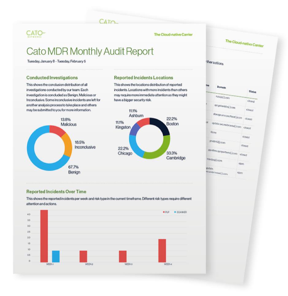 MDR monthly audit report