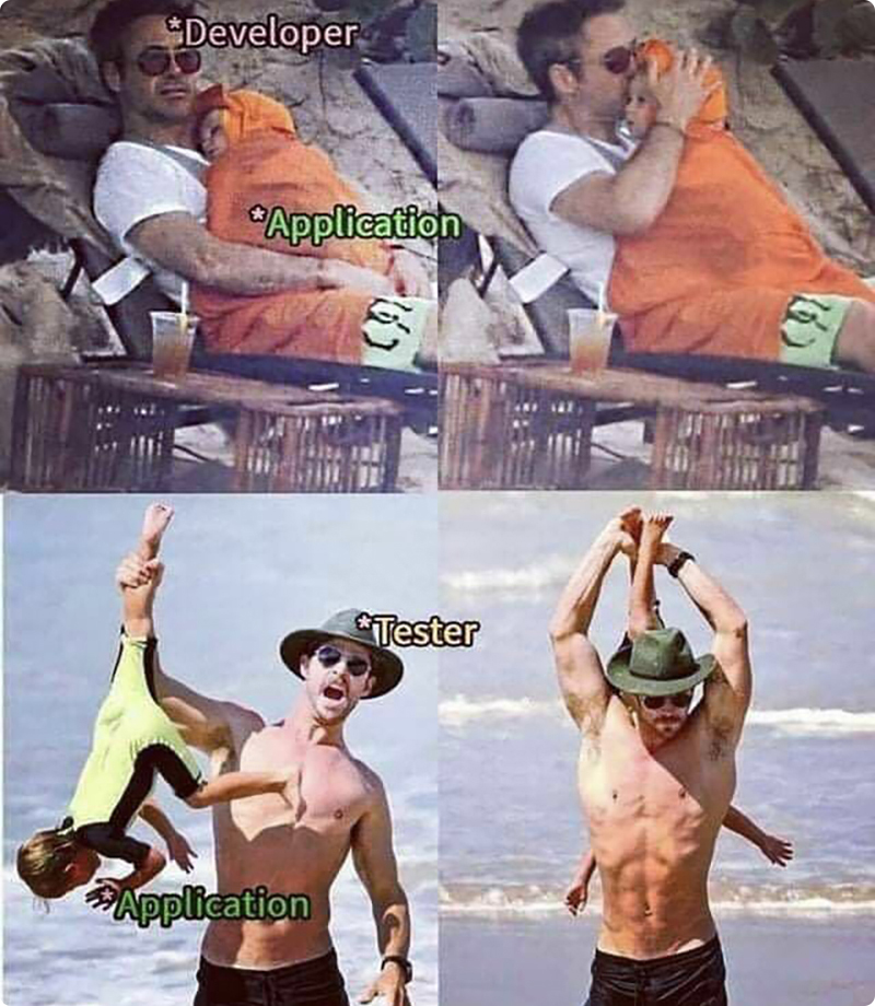 Best Explanation of Application Developers vs. Application Testers